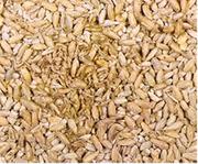 Зерно пшеницы мягкой 5 класс (фураж) имеется зерновая